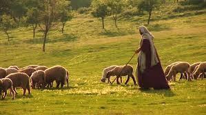 WALKING WITH THE SHEPHERD PSALMS 23