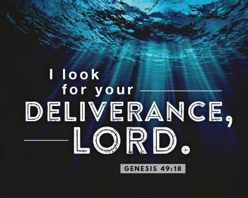 the-choice-for-deliveranceTHE CHOICE FOR DELIVERANCE.