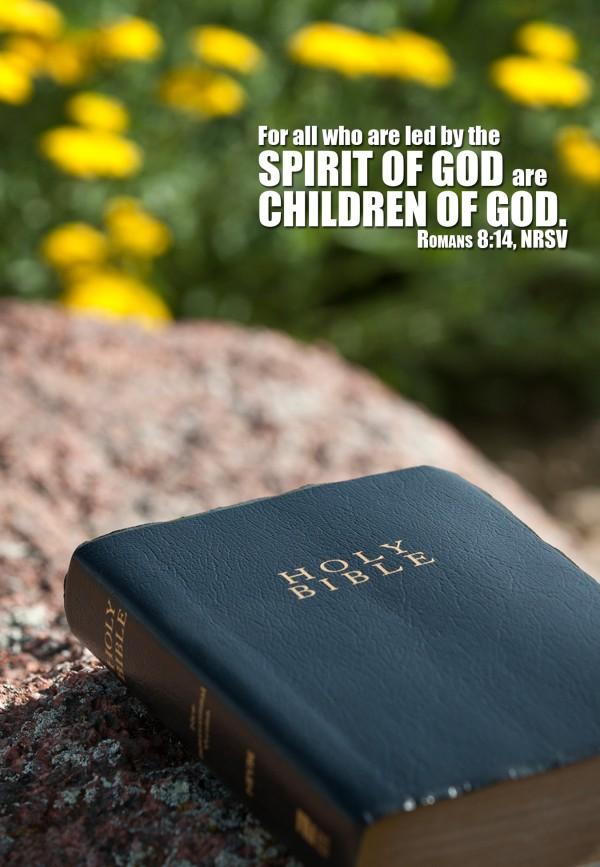 life-in-gods-spiritLife In God's Spirit