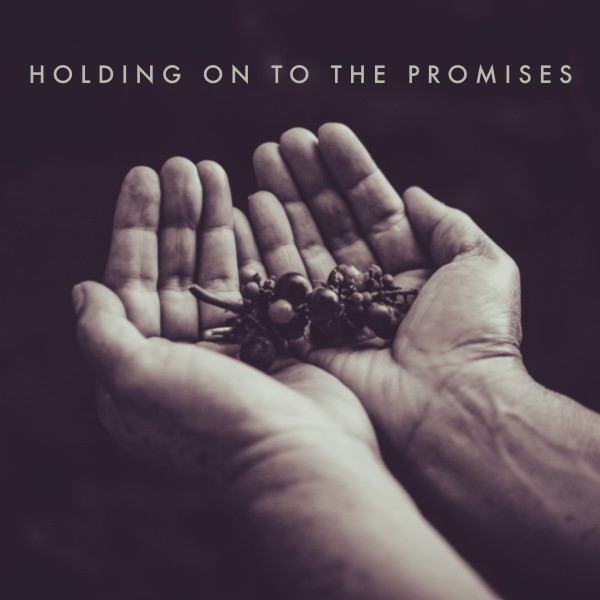 holding-on-to-the-promisesHolding on to the Promises