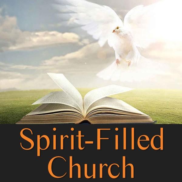 the-spirit-filled-churchThe Spirit Filled Church