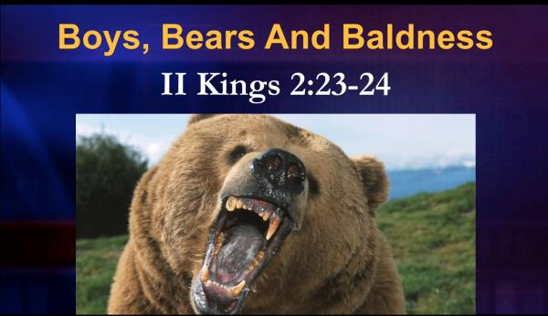 Boys, Bears and Baldness