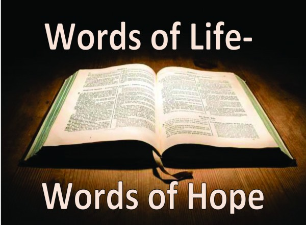Scripture Readings for Trinity 8