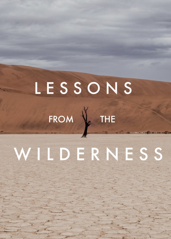 into-the-wildernessInto the Wilderness