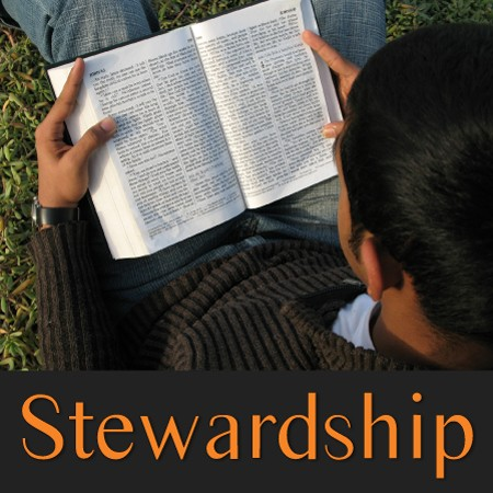 stewardship-the-right-startStewardship: The Right Start