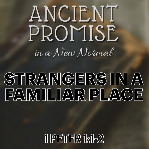 strangers-in-a-familiar-placeStrangers in a Familiar Place