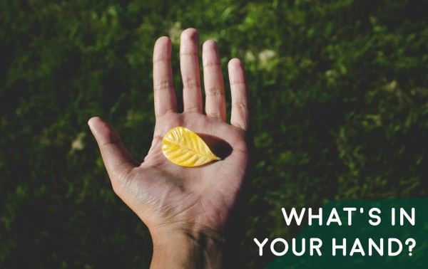 whats-in-your-hand-mar-26th-2017What's in your hand?-Mar 26th, 2017