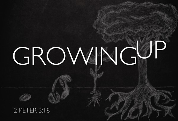 Growing Up part 2 - Grow your gift