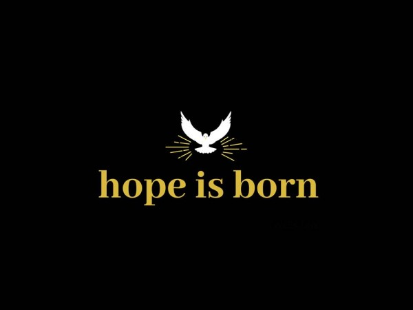 Hope is Born - Part 2 - From Wander to Wonder