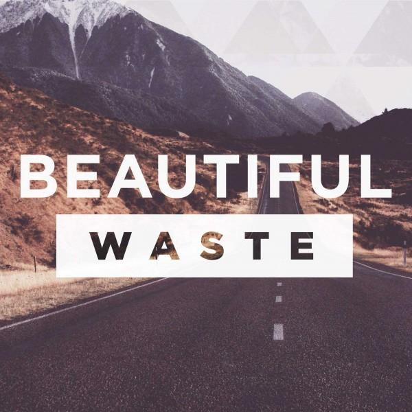Beautiful Waste