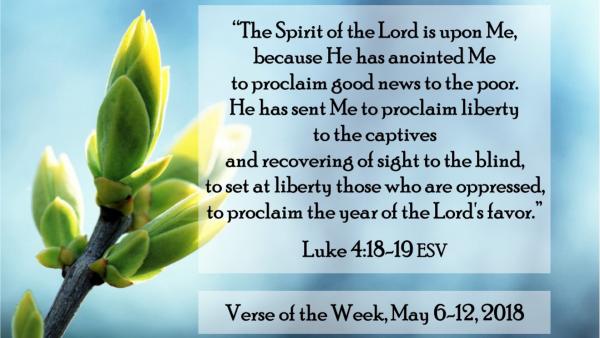 a-word-of-encouragementA Word of Encouragement
