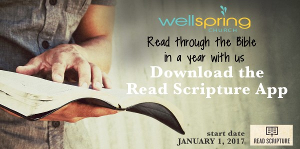 The Year of the Bible- Week 24 (Ecclesiastes, Song of Songs)