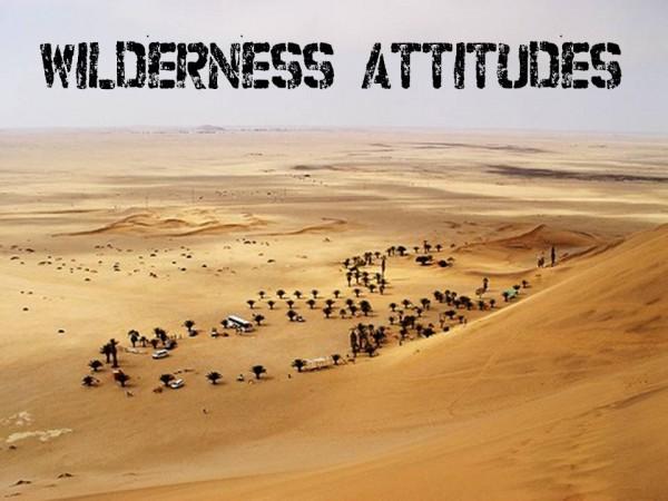 wilderness-attitude-adjustment-part-iWilderness attitude adjustment; part I