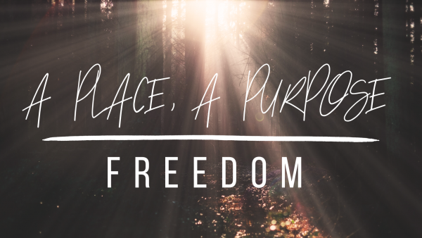 A Place for Freedom