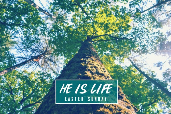 He is life -Apr 16,2017