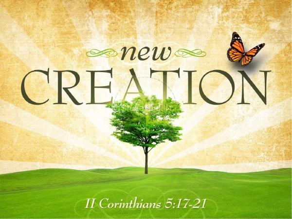 a-new-creationA New Creation
