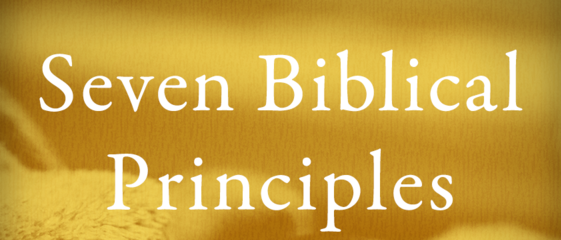 seven-theological-principles-for-biblical-counselling-part-recording-only-sorrySeven Theological Principles for Biblical Counselling (Part Recording ONLY, Sorry)