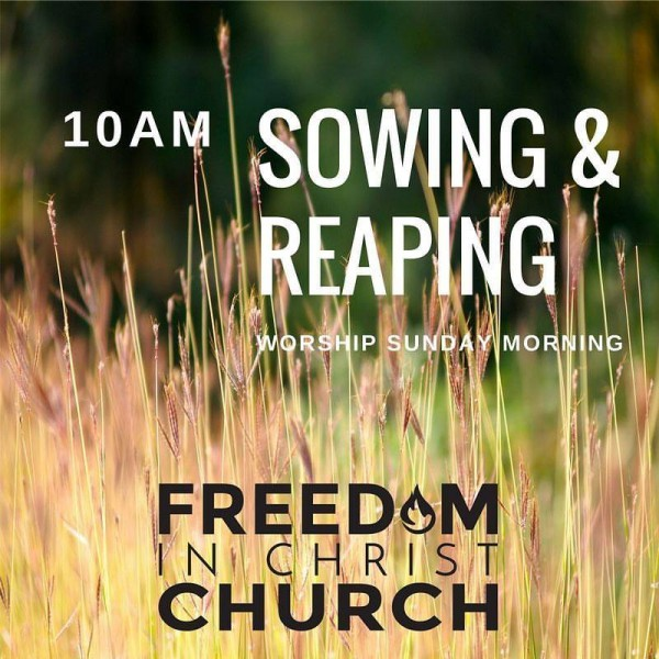 sowing-and-reapingSowing and Reaping