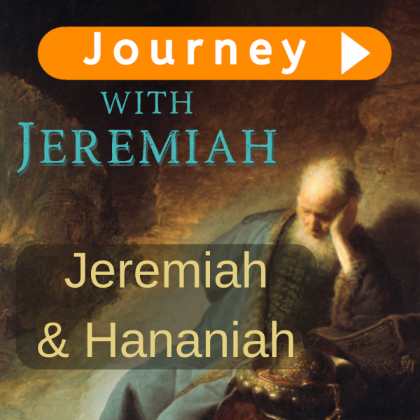 Jeremiah and Hananiah