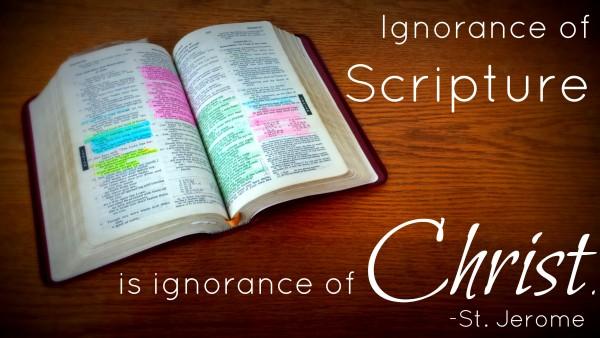 declaration-revelation-examinationDeclaration, Revelation, Examination