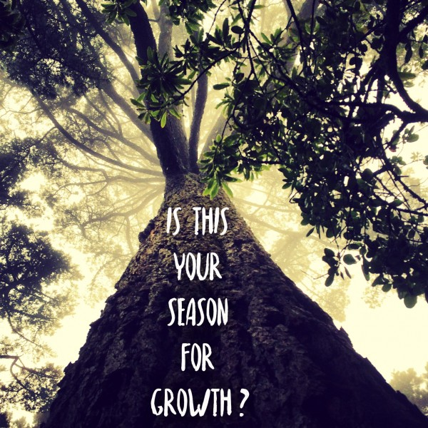 Is this your season for growth?- Dec 4th,2016