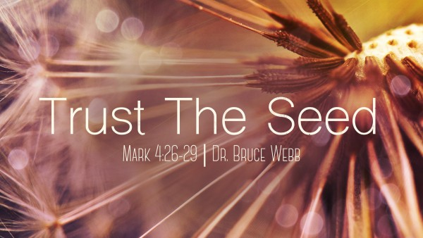 trust-the-seed-dr-bruce-webbTrust The Seed | Dr. Bruce Webb