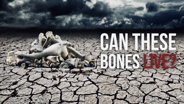 can-these-bones-liveCan These Bones Live