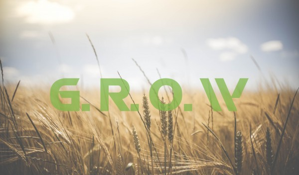 the-big-announcement-growThe Big Announcement-GROW
