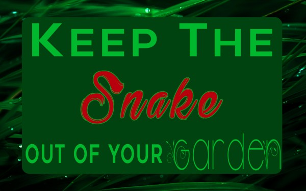 keep-the-snake-out-of-your-garden-pastor-kenny-smithKeep The Snake Out Of Your Garden (Pastor Kenny Smith)