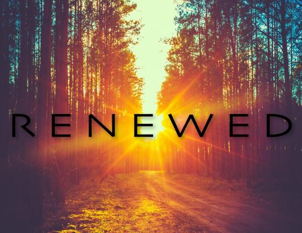 renewed-art-3-renewed-visionRenewed art 3 - Renewed Vision