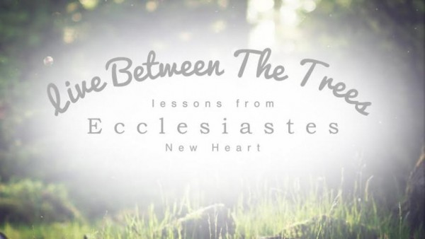 """""""Adventures in Vapor Management"""" Ecclesiastes 1:1-2:26"""