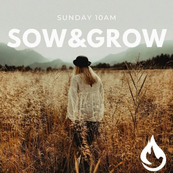 2020-a-year-to-sow-a-year-to-grow-22020 A year to Sow! A Year to Grow! 2