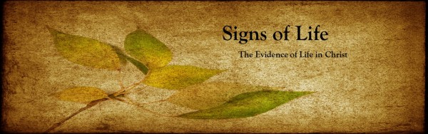 gifts-of-the-spirit-prophecy-what-whyGifts of The Spirit: Prophecy- What & Why