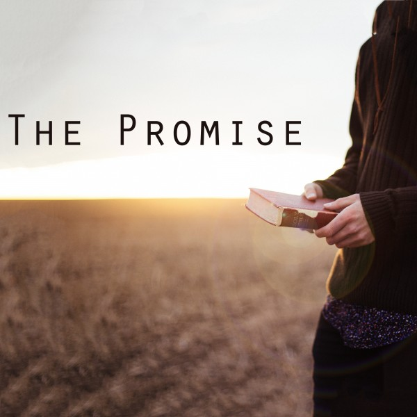 5-13-18 - The Promise - Part 1 - The Promise of A Mother