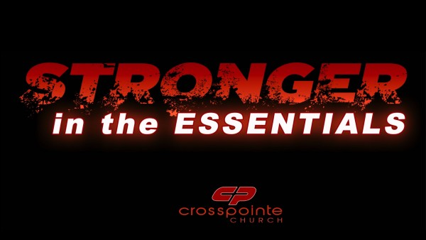 stronger-in-the-essentialsStronger In the Essentials
