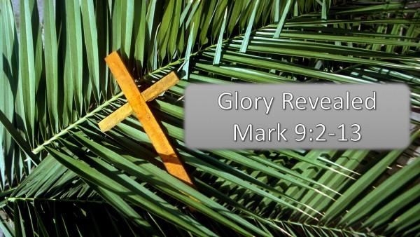 palm-sunday-glory-revealedPalm Sunday - Glory Revealed