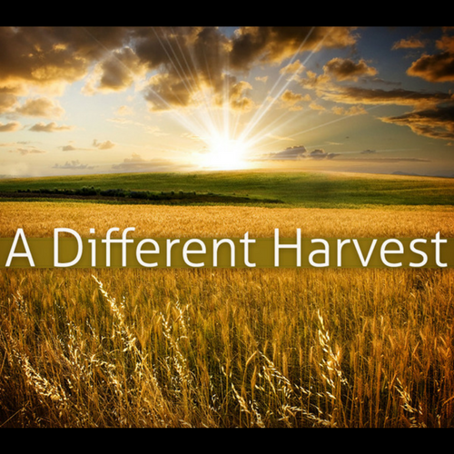 A Different Harvest Part 2 - What are you eating?