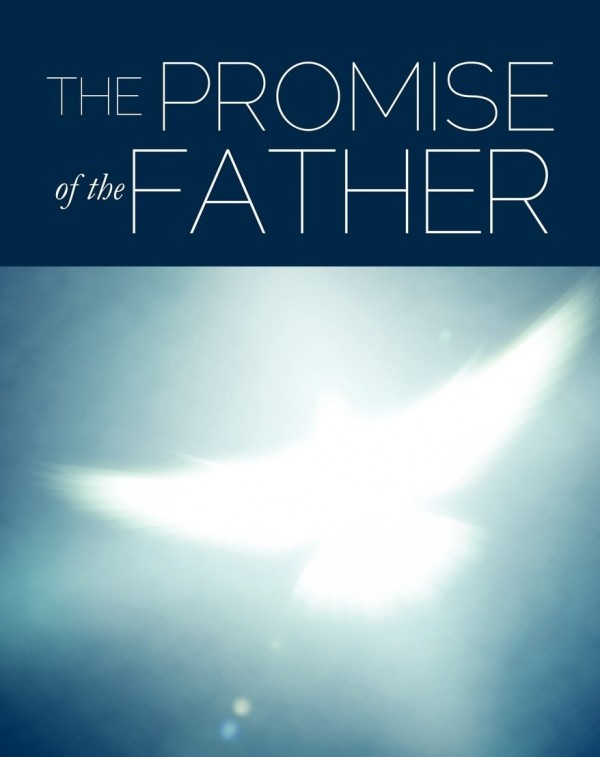 the-promise-of-the-fatherThe Promise Of The Father