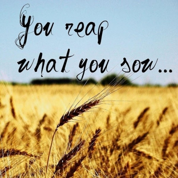 you-reap-what-you-sowYou Reap What You Sow