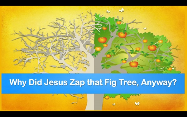 light-of-christ-church-wisconsin-rapids-wi-podcast-why-did-jesus-zap-the-fig-tree-anyway-mar-12-2017 Light of Christ Church Wisconsin Rapids, WI Podcast Why did Jesus zap the fig tree anyway? Mar 12, 2017