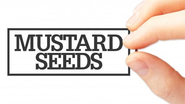 mustard-seedsMustard Seeds