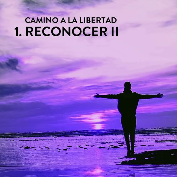 Camino a la Libertad Paso 1: Reconocer II