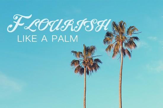 Flourish Like a Palm Tree Part 2