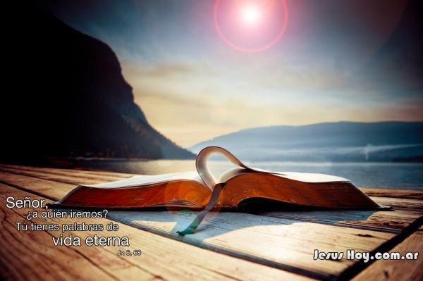 Visón, herencia y bendición