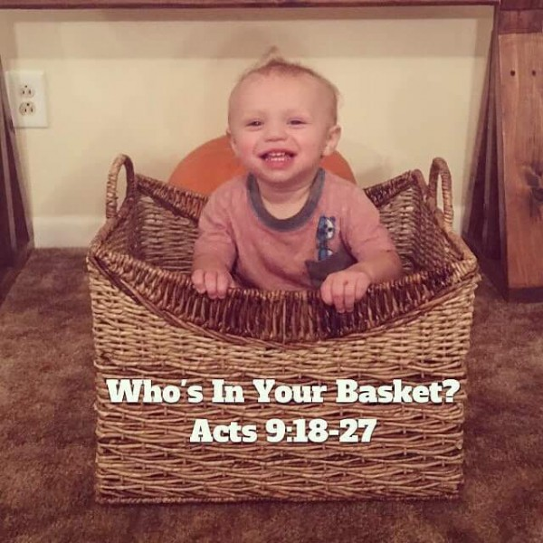 whos-in-your-basketWHo's in Your Basket?