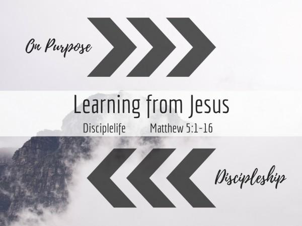 Disciplelife