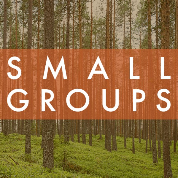 small-groupsSmall Groups