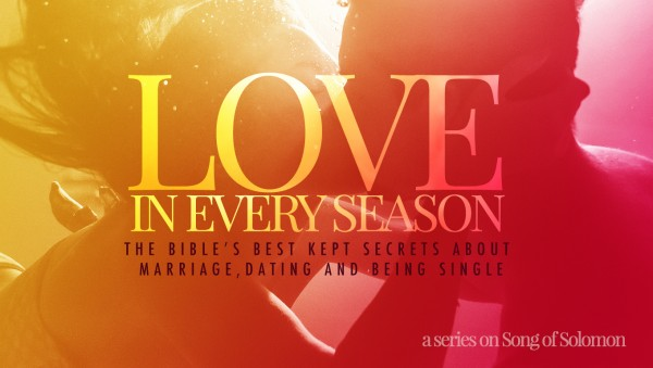 Love in Every Season  part 1- The Art of Attraction