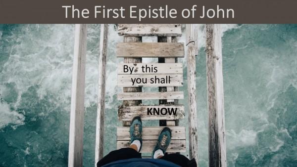 03-i-john-15-22-saying-does-not-equal-being-part-103 I John 1:5-2:2 - Saying Does Not Equal Being Part 1