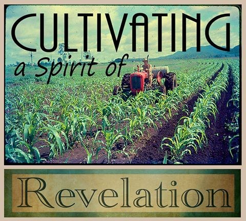 Cultivating the Spirit of Revelation
